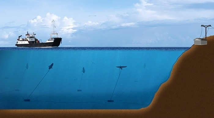 tidal energy plant gets 500 000 decc grant utility week